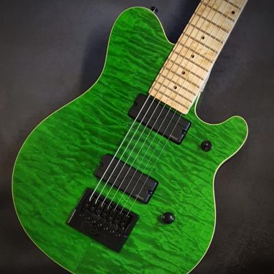 Vox Humana Custom Build Carbontech Electric 7 String Evertune 1